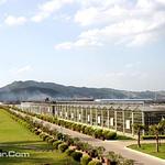 八桂田园景区