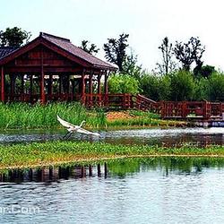 长江药用植物园