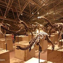 世界恐龙谷