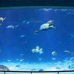 台湾海洋生物博物馆