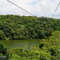 库兰达热带雨林公园