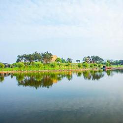 龙游姑蔑城生态园