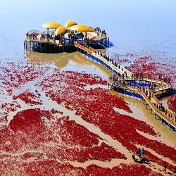 红海滩国家风景廊道