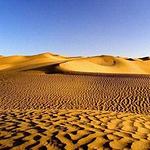 古尔班通古特沙漠