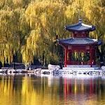 天井湖公园