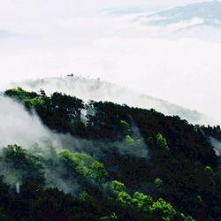 高黎贡山自然保护区