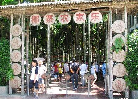 椰寨农家乐旅游