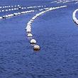 洲子湾海水浴场