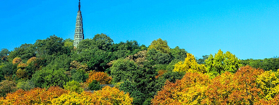 秋时景致美