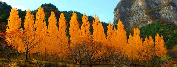 太原周边赏秋