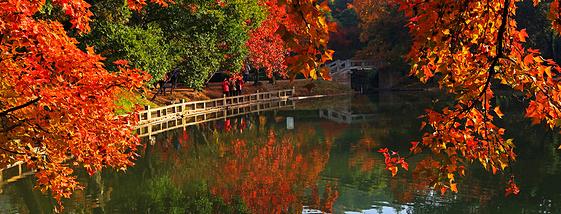 苏州自驾赏秋