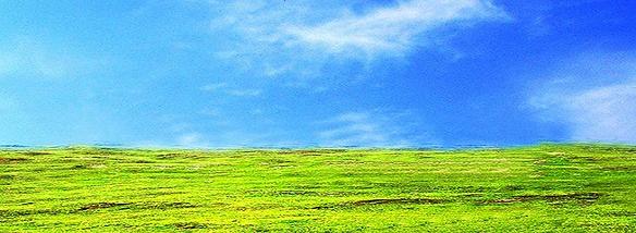 黔南草原风光