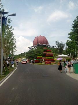 青岛世园会旅游景点攻略图
