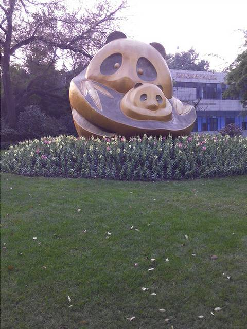 去了动物园,熊猫基地.