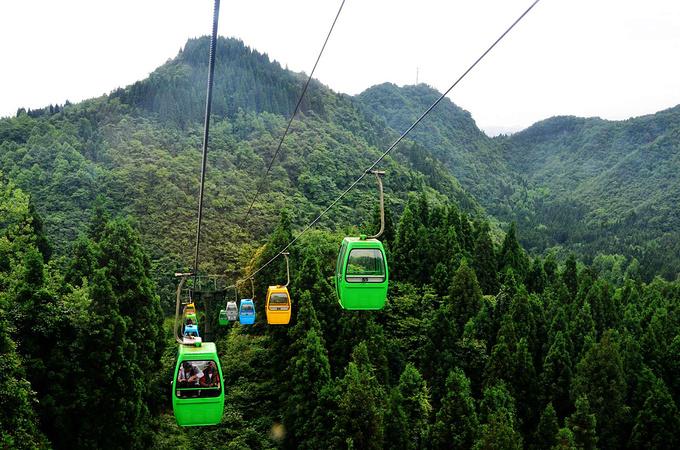 鸡公山森林公园图片