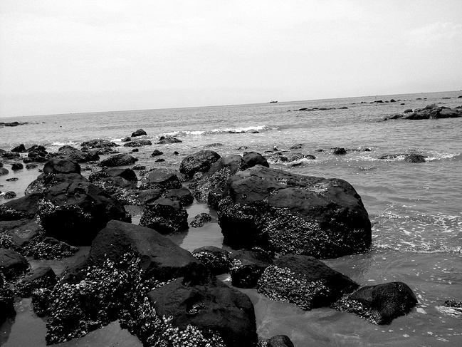 梦寐中的硇洲岛_湛江旅游攻略_自助游攻略_去哪儿攻略