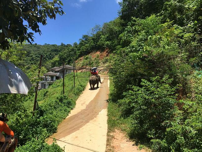 清迈(泰国、曼谷、清迈、普吉)自由行_清莱旅九分旅游攻略图片