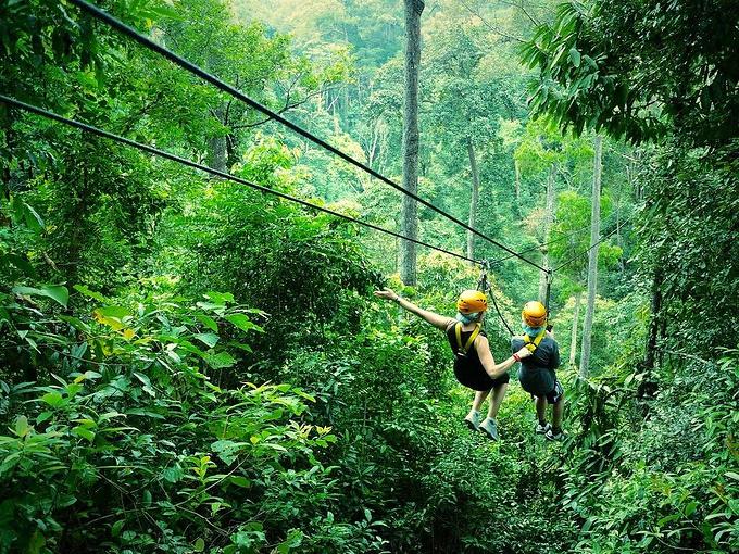 清迈丛林飞跃图片图片
