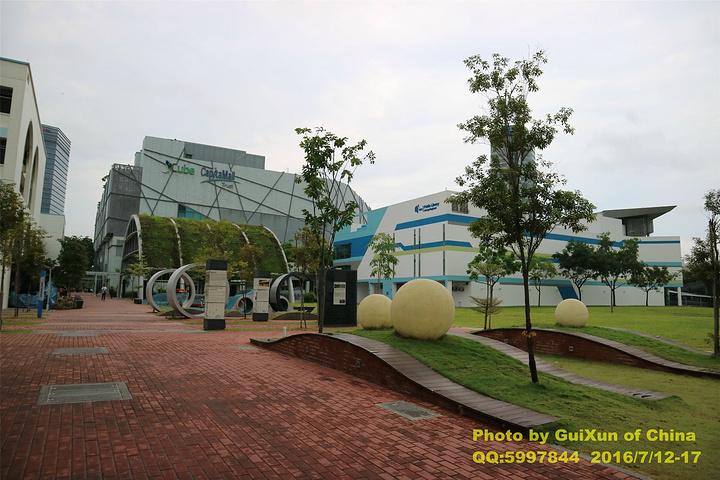 """有趣的小发明_新加坡图片中心""""的评论大全魔兽世界攻略升级技能科学图片"""