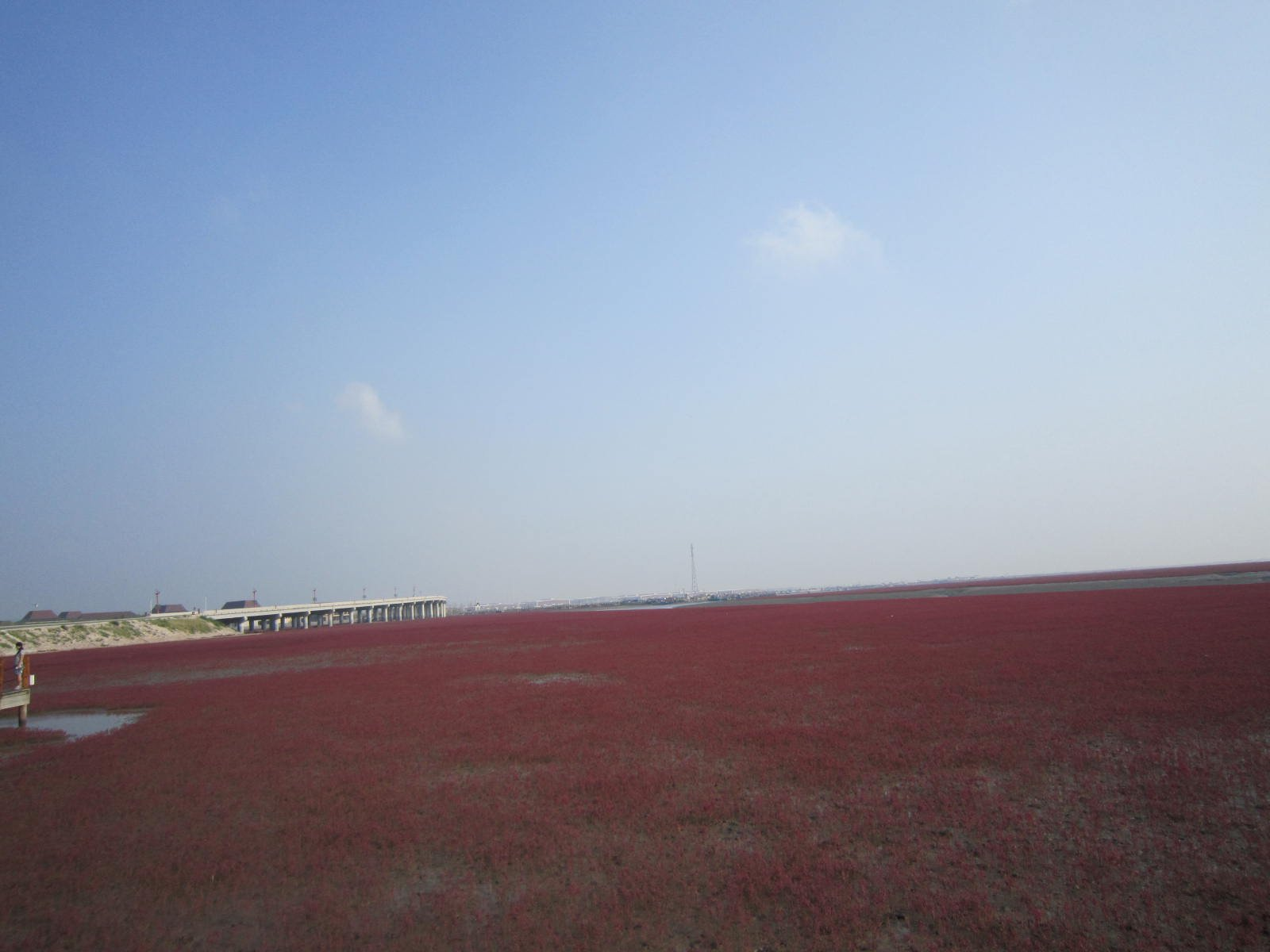 畅游红海滩国家风景廊道