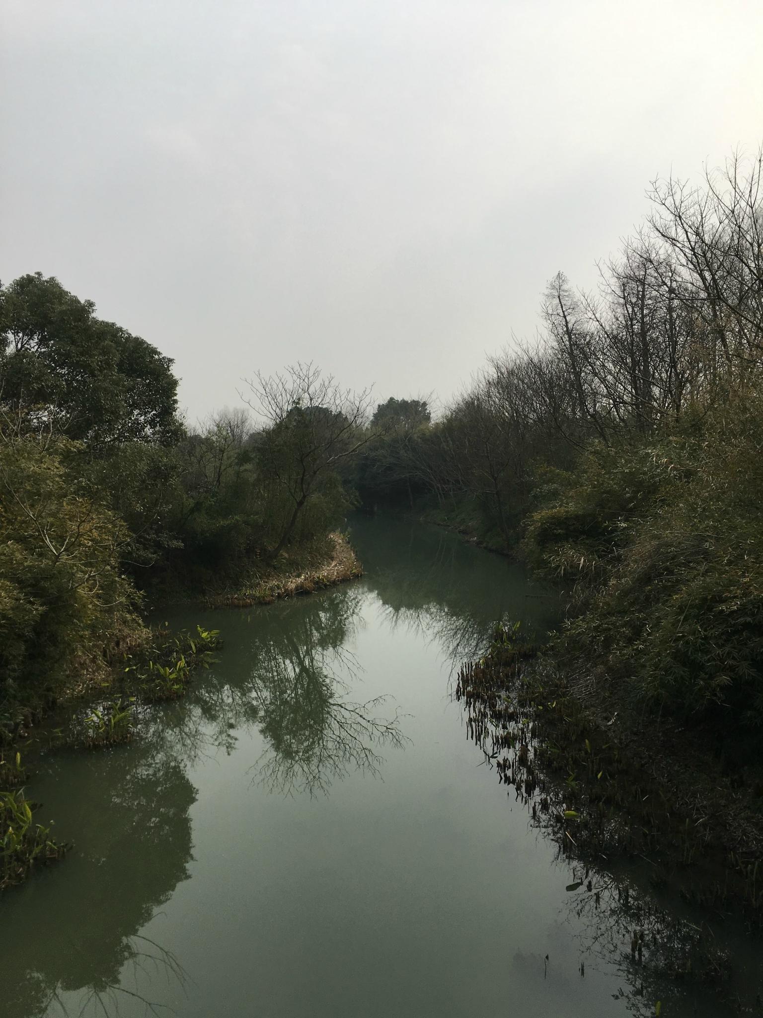 三八前的西溪攻略公园_杭州旅游海鲜_自助游攻略京深湿地图片