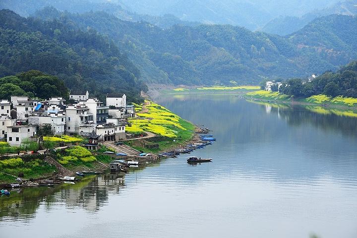 新安江山水画廊两岸生态环境保存良好,呈现高山林,山中茶,低山果,水中