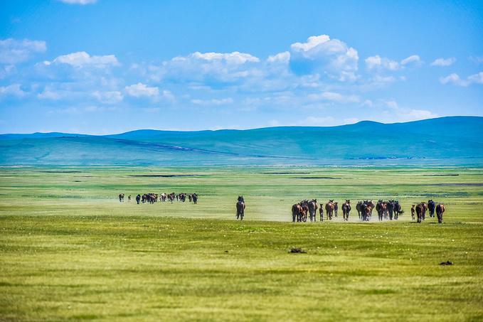 【大美内蒙古】观草原湿地,看中俄边疆之美,感受祖国壮美景观