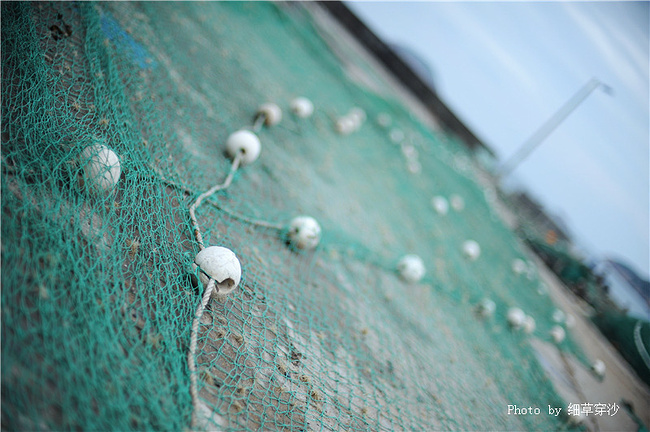 攻略岛--奇观山海,旅游枸杞_舟山旅游天堂蓬莱阁攻略摄影图片