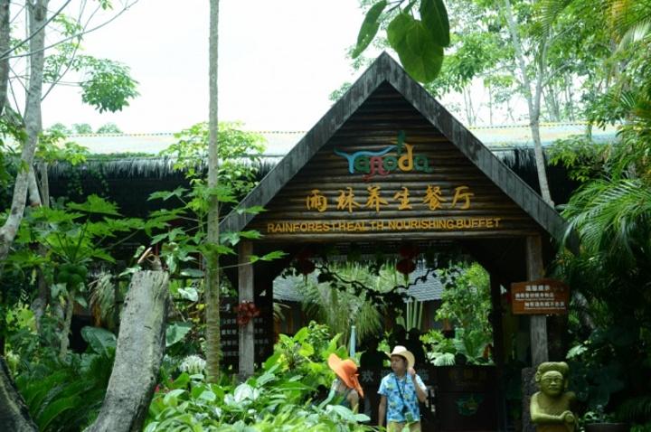 呀诺达雨林景区位于海南省三亚市,是名副其实的三亚后花园.