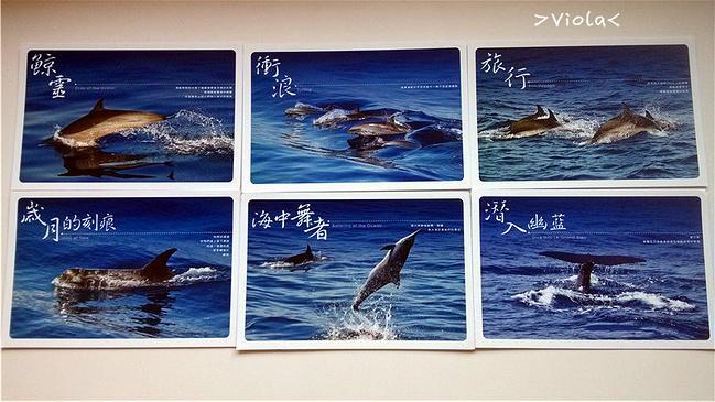 暑期花莲自由行_台湾v攻略攻略攻略视屏城图片