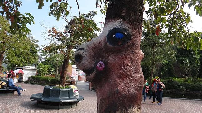 根据树的造型刻画出的动物,有创意