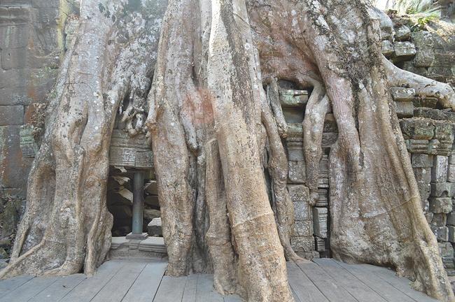 塔布笼寺图片