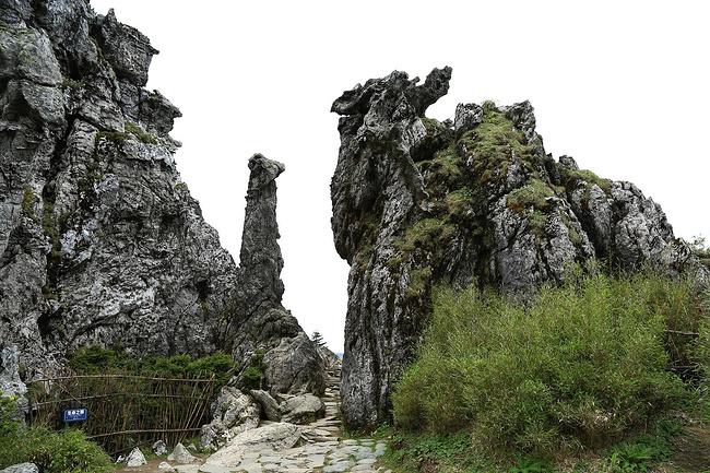神农架国家森林公园图片