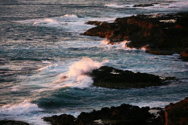 莫宁顿半岛国家公园图片