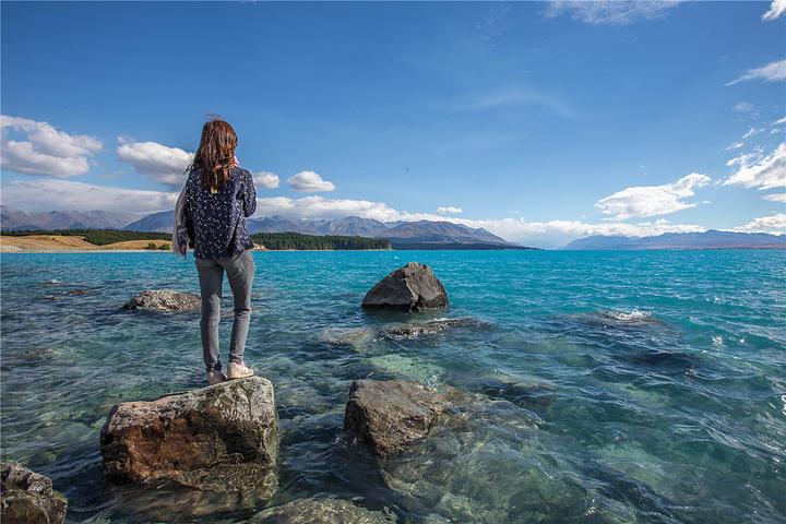 去往库克山的80号公路,堪称是公认最美的自驾公路,一切无他,就因为他旁边的Pukaki湖。 虽然Tekapo湖也是蓝的不太正常,但二者还是有稍许不同,Tekapo湖蓝的更妖艳,而Pukaki湖蓝的更温柔,我在这里学到一个新颜色:乳蓝/奶蓝。这种颜色的成因是库克山的入湖河水夹杂着颇多矿物质,流入湖水后这些乳白色的石灰石悬浮微粒与矿物质就与湖水纠葛一处,只要在阳光照耀下略一发骚,就会催生了这个神奇的颜色。 当我们今天第一眼看到Pukaki湖的时候,就被震惊的说不出话来。