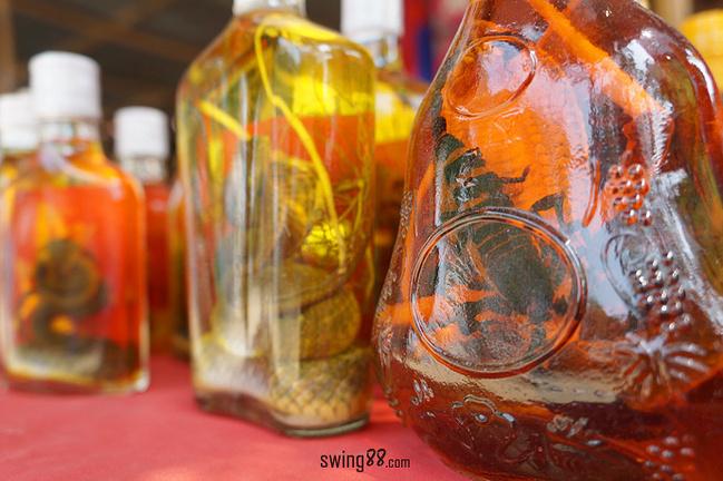 玛卡-蝎子酒_蝎子酒和蛇酒也是非常好的补品.