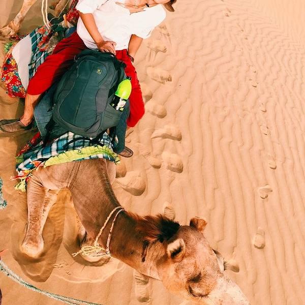塔尔沙漠是世界上