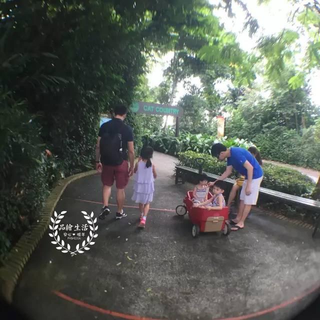 手绘儿童自行车