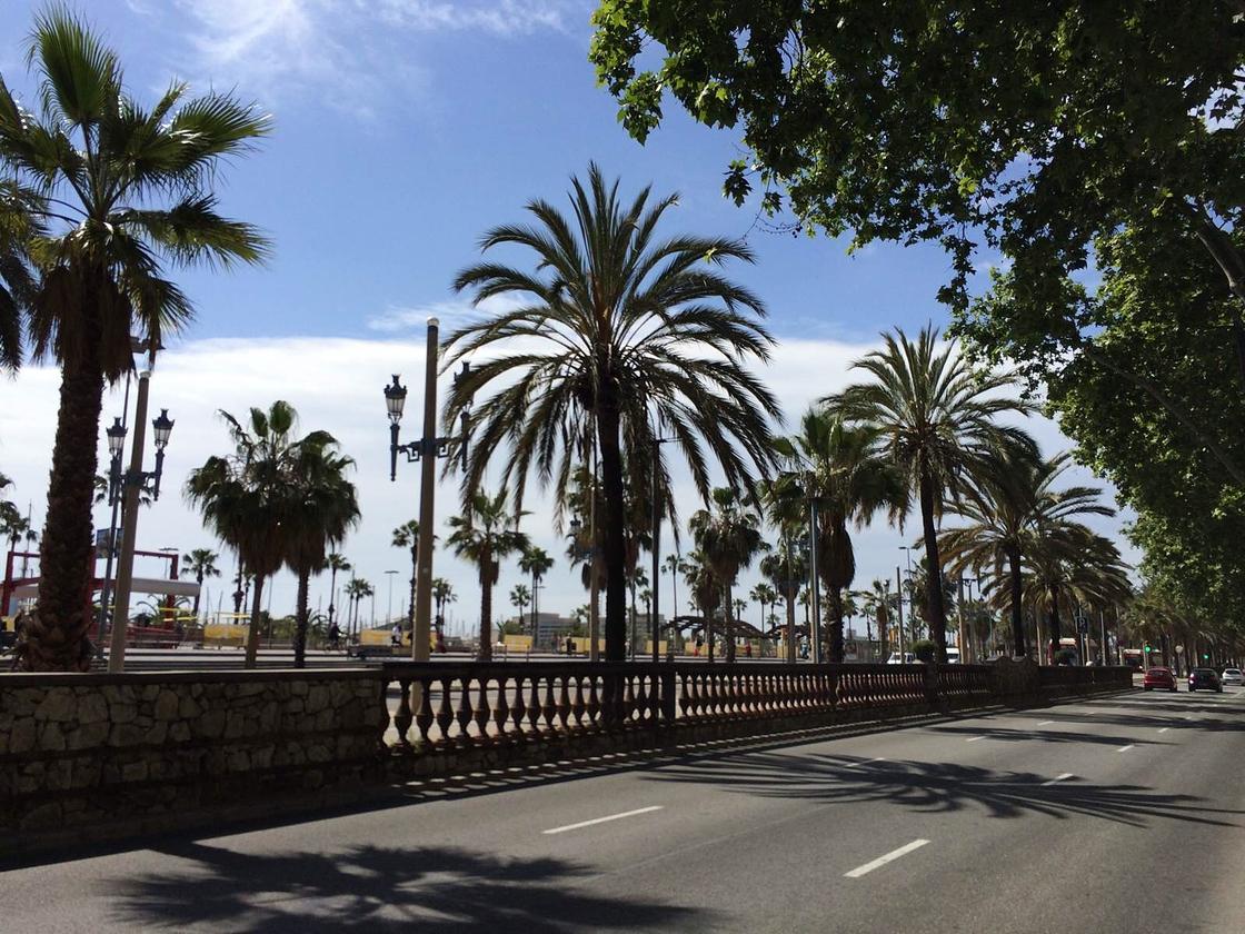 我的巴塞罗那,你的日内瓦湖