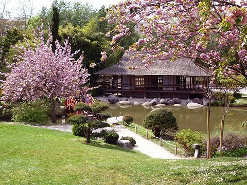 日本旅游地?_日本庭院旅游景点图片