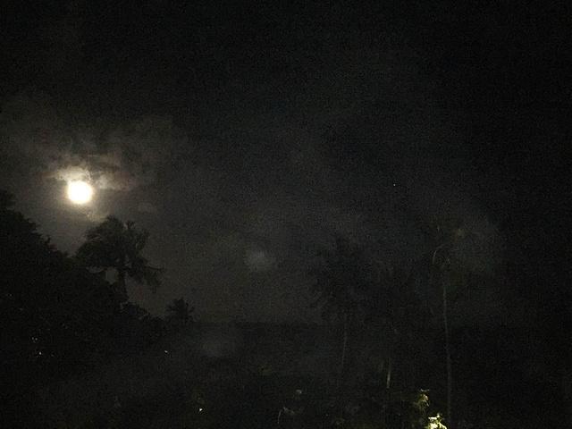 这是手机拍的,只有月亮是清晰的,漫天的星星点点基本都不在画面中,i拍图片