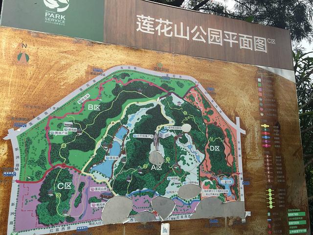 莲花山公园平面图