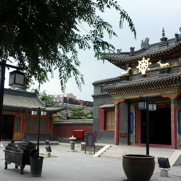 五塔寺就在席力图召旁边,步行十分钟就到了,看过北京的五塔寺,也特别想看看呼和浩特的。看完觉得五塔寺虽然没有北京的五塔寺那么霸气,但是精细程度毫不逊色。五塔寺的大门很小也很破旧,用导航过去,经过门口都察觉不出来已经到了,因为大门实在不起眼。经过问路人才发现已经被我们路过。从大门进去,里面挺小的也很空旷,熙熙攘攘就几棵树,有几棵看着像古树的大树,已经被五颜六色的经幡把树根包的严严实实的。首先出现在我们眼前的不是那个有名气的金刚座舍利宝塔,而是一座典型的寺庙,寺庙基本没什么人,房子是典型的仿唐建筑,大殿门口放着