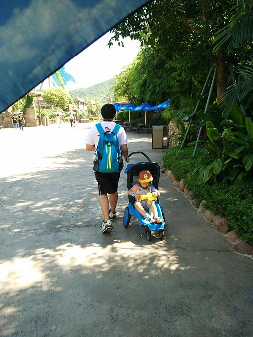 亲子游◆广州长隆野生动物园 珠海海洋王国
