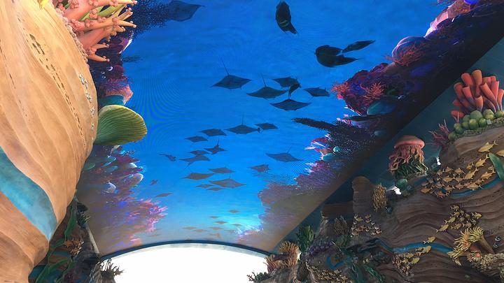 """""""最好玩的动物展馆:鲸鲨馆(海洋奇观._珠海长隆海洋王国""""的评论图片"""