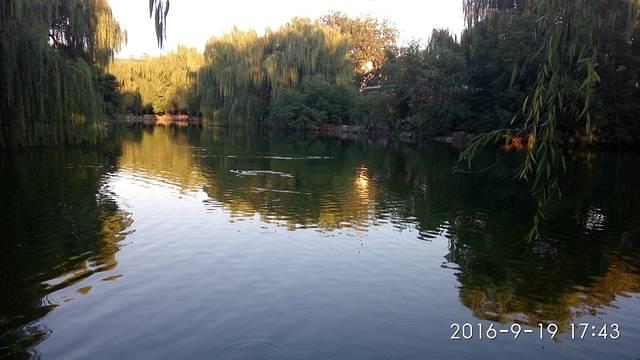 北京动物园半天