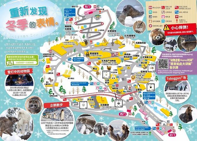 冬季是旭山动物园的旅游旺季,建议大家早点前往,赶上午10:30入园,看11
