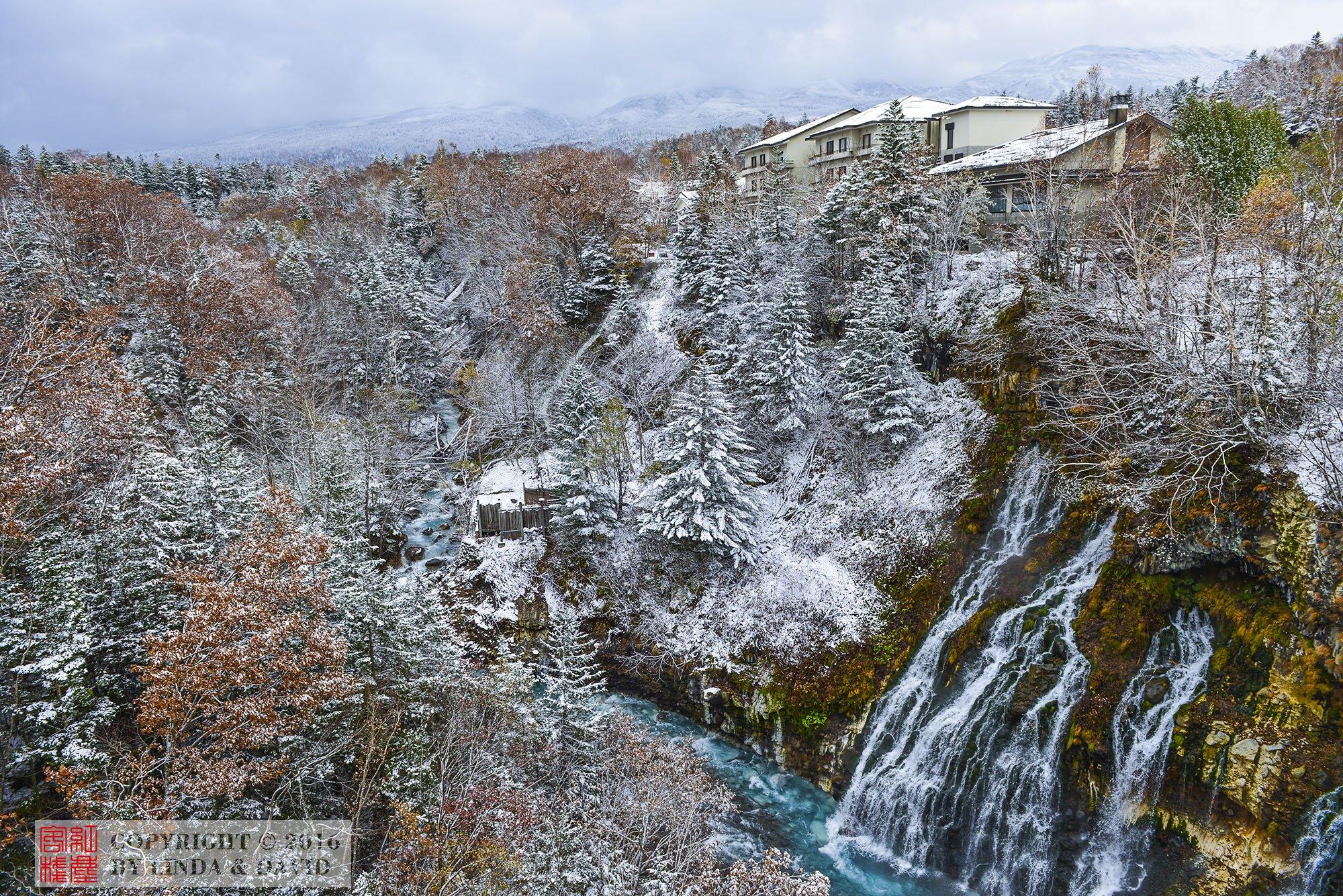 雪山,雪松,红枫,瀑布,涧水,组成了一副优美的画卷.