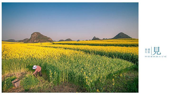 罗平风景区介绍