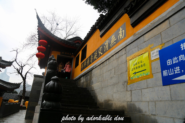 一场江浙沪的攻略之旅(580张高图带清大你玩转11月韩国自由行自驾图片